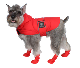 dog in rain coat and boots