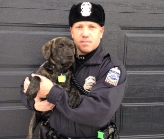 Columbus, Ohio, police officer Rodger Nolan rescued a puppy from a shelter just weeks after he'd just saved her from a car accident.