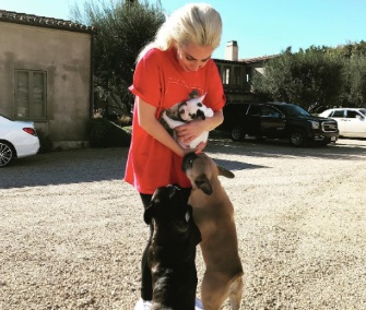 Lady Gaga introduced her new puppy on Instagram this week.