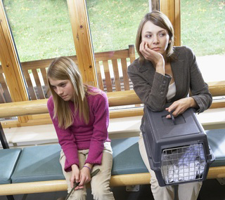Worried pet owners in waiting room
