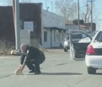 An Arkansas police officer stopped his car in traffic to save a tiny lost dog.