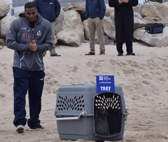 Patriots defender Trey Flowers was on hand for the release of a rehabilitated seal who was named for him.