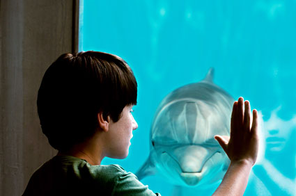 "Nathan Gamble as Sawyer Nelson with Winter in Alcon Entertainment's family adventure ""Dolphin Tale,"" a Warner Bros. Pictures release."