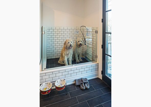 Custom Home Design Features That Make Living With Dogs Easier