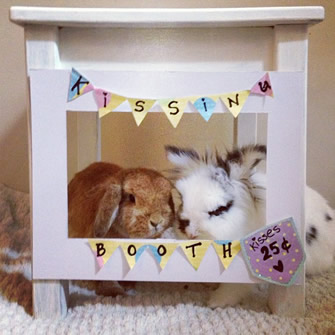 bunny kissing booth