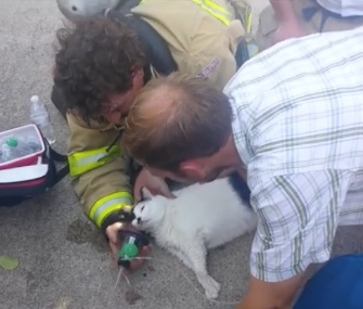 Firefighters in Ames, Iowa, spent more than 30 minutes working to revive a cat found in a burning home.