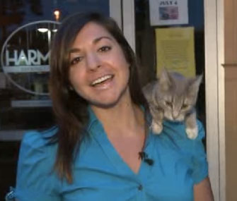 A stray cat jumped on Fox 17 reporter Nicole DiDonato's shoulder during a live shot.