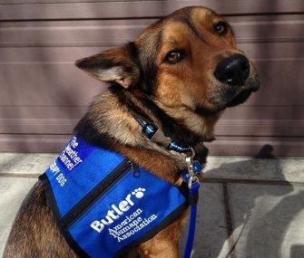 Butler will serve communities hit by severe weather for The Weather Channel and the American Humane Association.