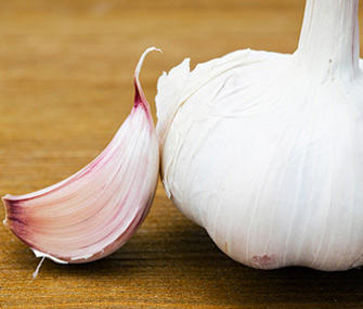 Can garlic help keep my dog 39 s fleas away - Home remedies to keep fleas away ...