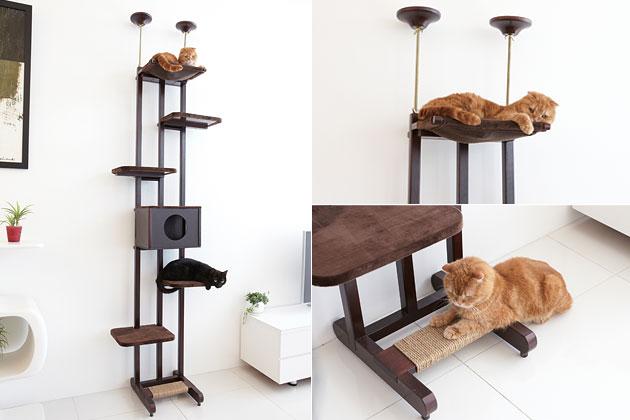 door cat climber pezcamecom - Cat Climber