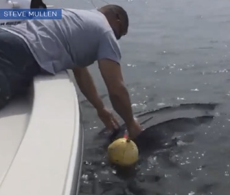 Two off-duty officers saved an entangled leatherback sea turtle in the Atlantic.