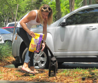 woman feeding feral cats