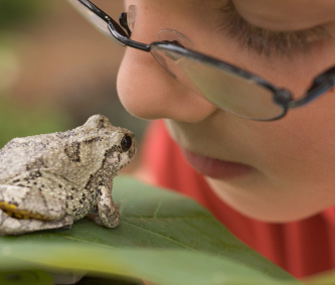 Kid With Frog