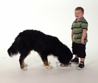 """Apparently Kid"" Noah Ritter appears in a commercial for FreshPet dog food."