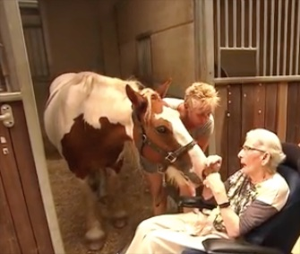 Nelly Jacobs, who suffers from Parkinson's disease at age 87, got her final wish to ride horseback one last time.