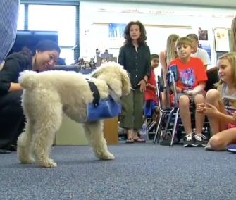 A group of Ohio State engineering students tells elementary school kids about the prosthetic leg they created for Jimmy.