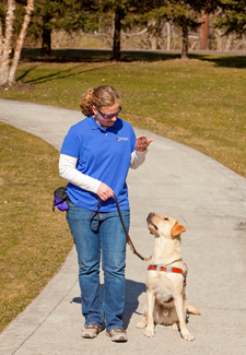 trainer walking a guide dog