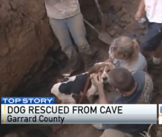 Rat the Coonhound raced to his owners when he was freed from a Kentucky cave.