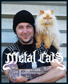 Metal Cats by Alexandra Crockett book cover