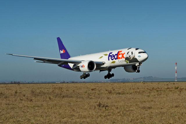 FedEx Panda Express Plane