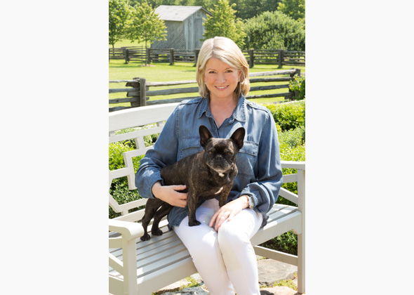 Martha Stewart Living The Good Long Life With Pets
