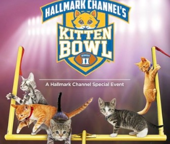 The lineup for the second annual Kitten Bowl is revealed.