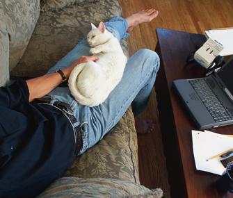Cat lying in man's lap