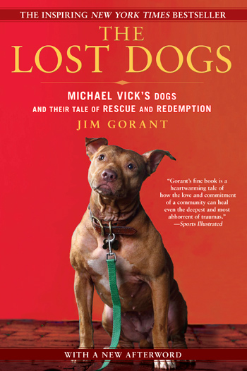 Lost Dogs Book Cover