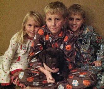Kids and Lab puppy