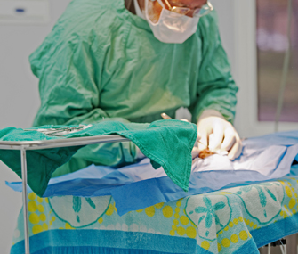 Vet performing surgery