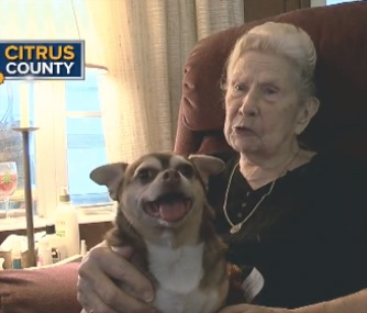 Sassy is happily back in her owner's lap after barking to get her help when she fell.