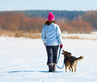 5 Ways to Keep Pets Happy During the Holidays