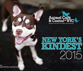 New York's Kindest calendar from NYC Animal Care & Control, $18