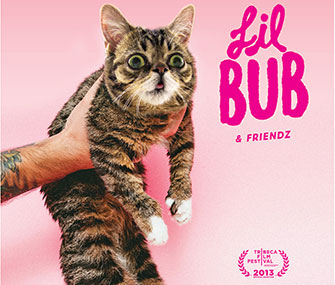 """Lil Bub and Friendz"" will premiere at the Tribeca Film Festival."