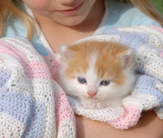 Girl holding kitten