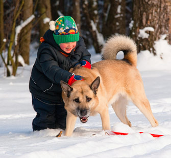 Kid playing with dog in snow