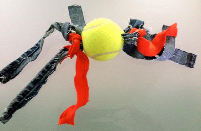 Homemade ball toy