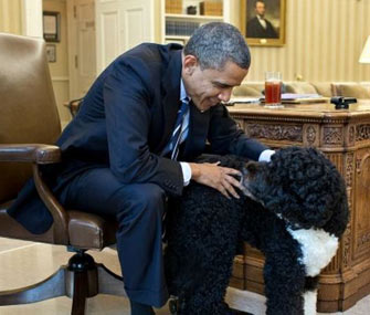 Bo Obama visits President Barack Obama in the Oval Office.