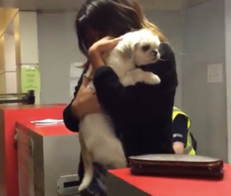 Jessica Urbina was reunited with Bam Bam at the Dallas airport this week.
