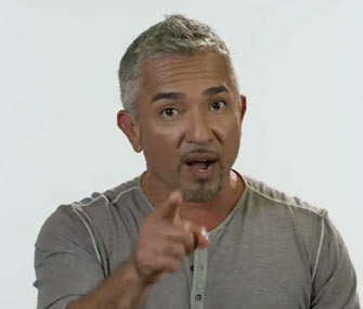 Dog Whisperer Cesar Millan announced this week that the final season of his controversial show will premiere in July.