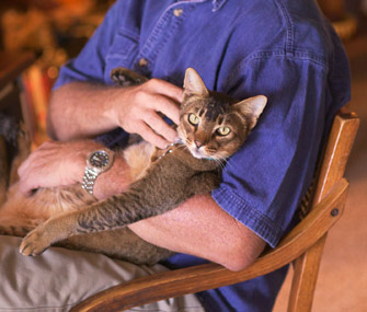 ten reasons pets make better partners than people. Black Bedroom Furniture Sets. Home Design Ideas