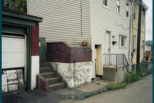 Spring Way, 2005