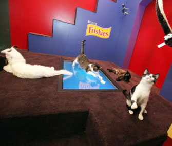 Friskies playhouse