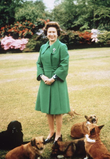 Queen Elizabeth and her Dogs