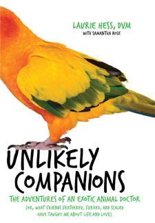 Image of: Elephant Unlikely Companions Dr Laurie Hess Shares Her Exotic Animal Adventures National Geographic Channel Book Review unlikely Companions By Dr Laurie Hess